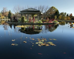 Photo shows a gazebo overlooking a reflection pond in the Denver Botanic Gardens. There are lily pads and shrubs in view.